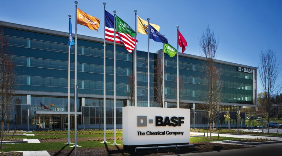BASF-to-exit-dimer-and-polyamide-resin-business